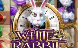 whiterabbit-online-pokies