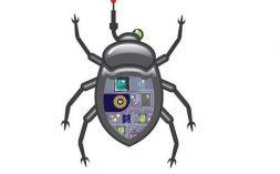 Technical Bug